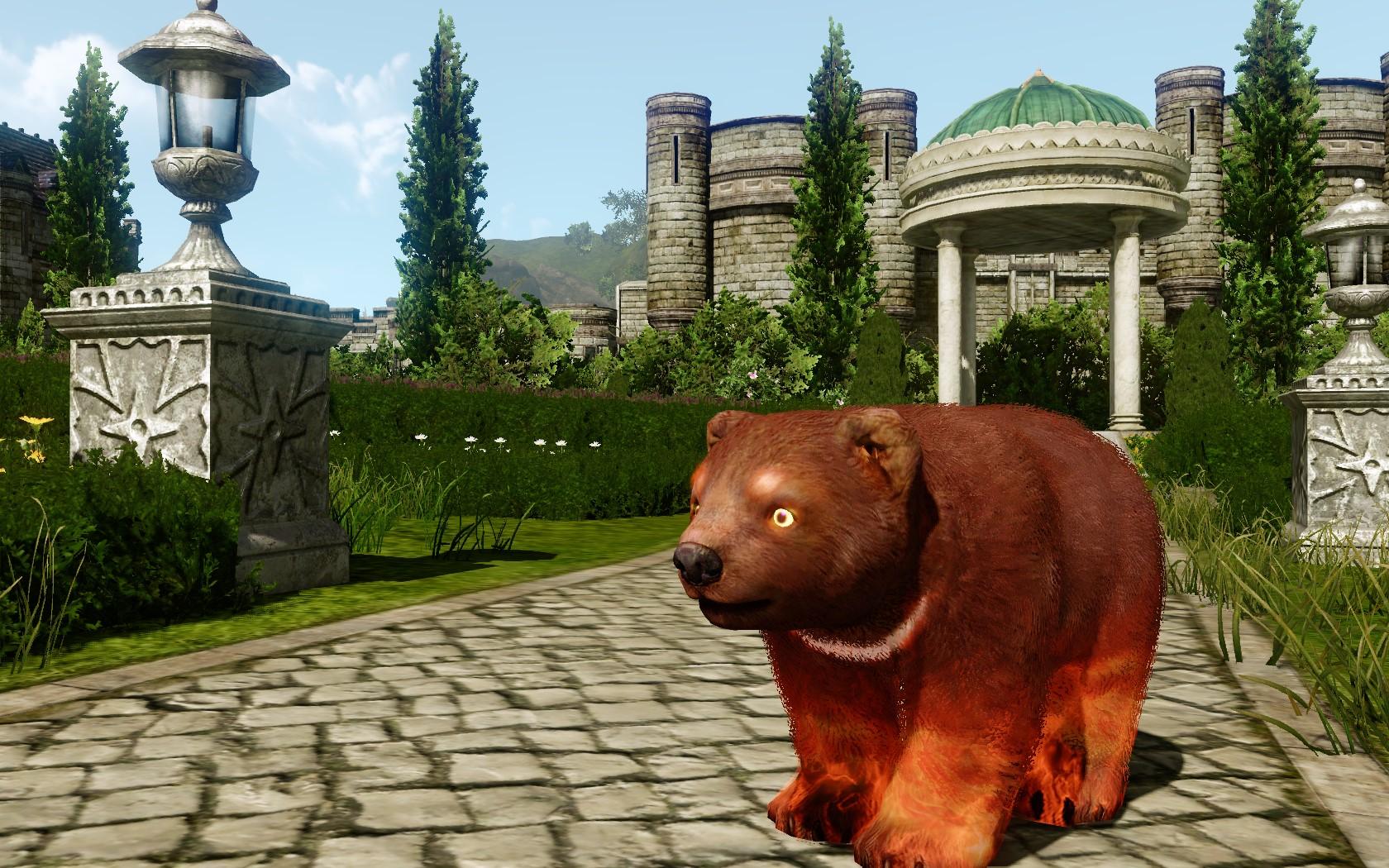 Зачарованный медвежонок