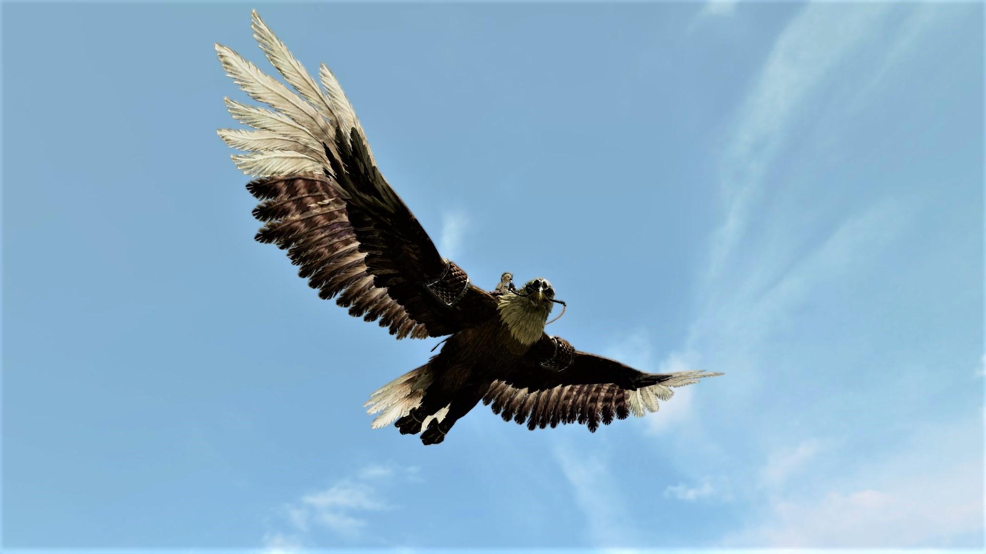 Глайдер «Орел»