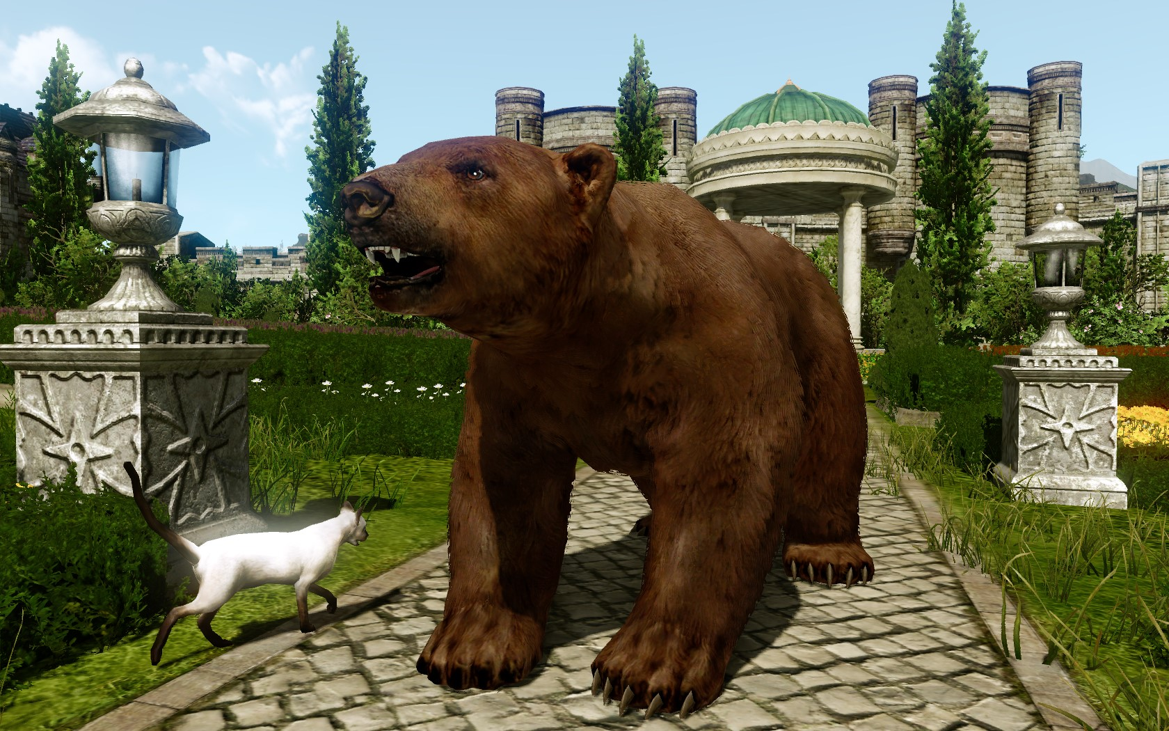 Боевой бурый медведь