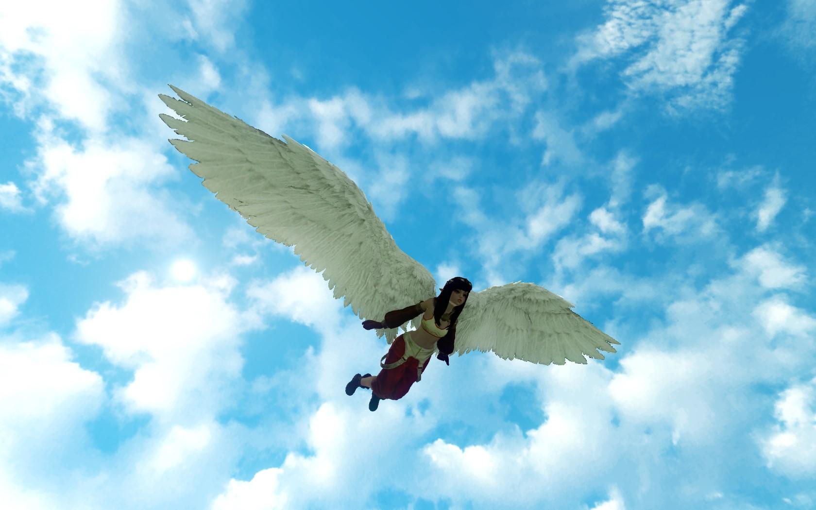 «Крылья астры»